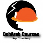 Professional Occupational Safety and Health Program