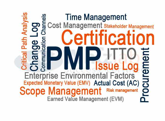 Top Reasons Why You Need To Be Pmp Certified Certifind Blog