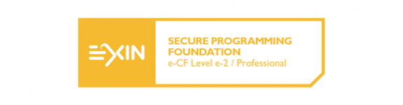 Secure Programming Foundation