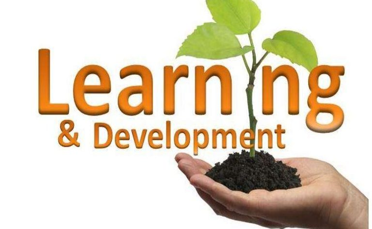 Why is Learning and Development Training Important for HR